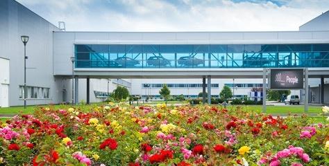 Kia'nın üretim tesislerinde yeşil alanlar büyüyor