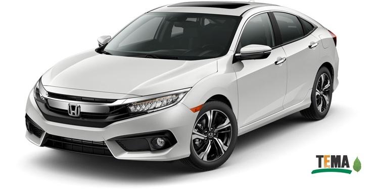 Her Honda bir fidan